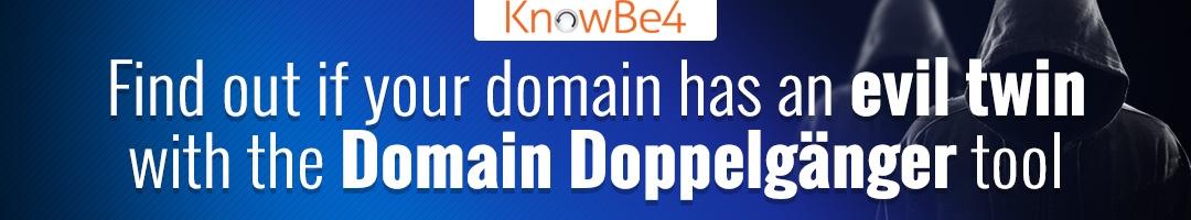 Domain Doppelgänger