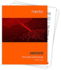 Download the Root Causes of Ransomware whitepaper